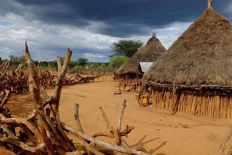 Café en grains bio Ethiopie Moka Yrgacheffe